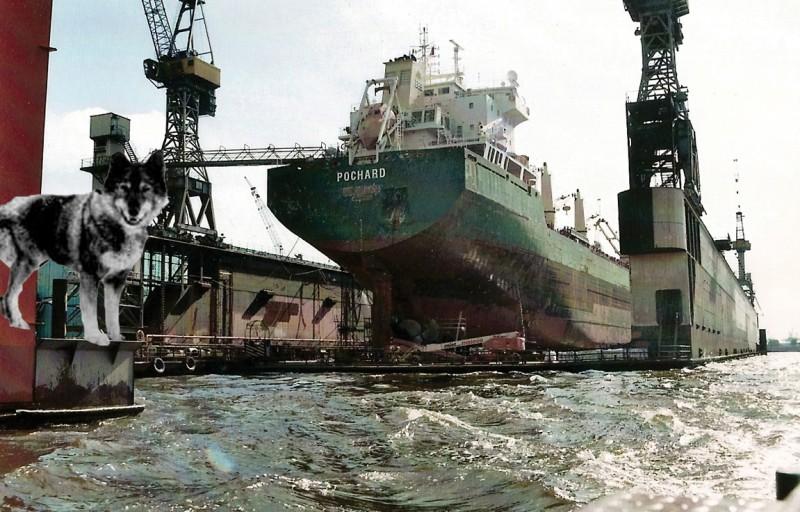 Togo im Hafen