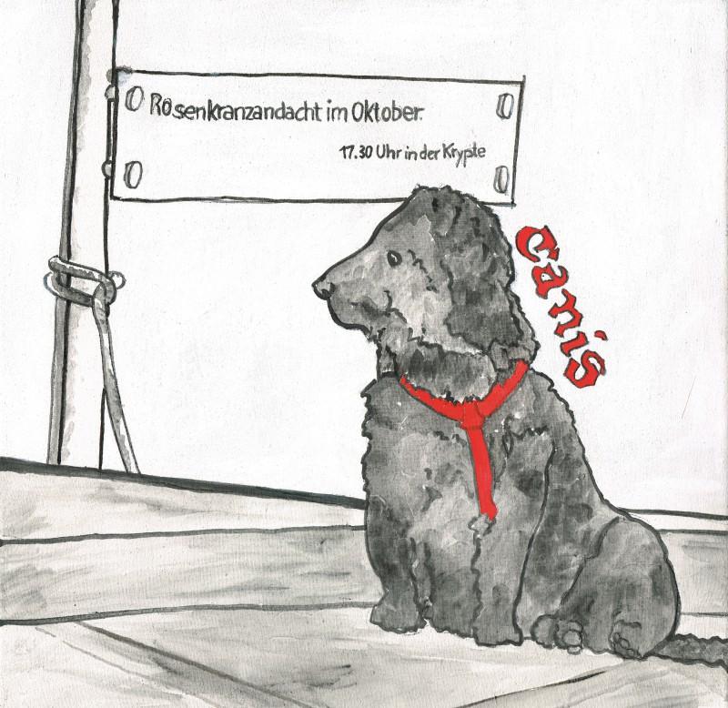 Hund in Mariataferl