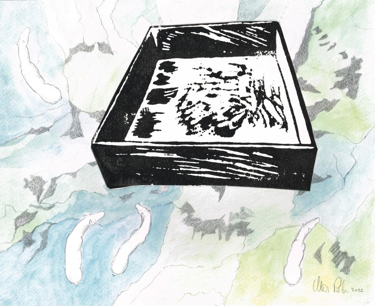 Landkarte mit Schachtel